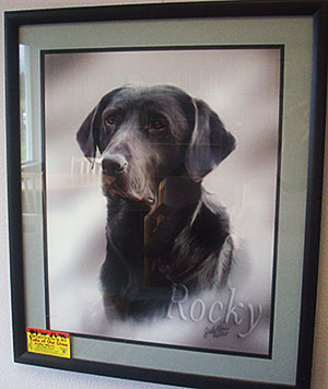 Judy Horn, Pet Portrait